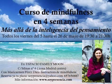 cursos de mindfulness en Madrid, mindfulness, meditacion
